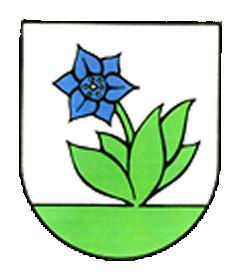 Obec Bodiná